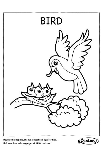 Birds - Free printable Coloring pages for kids | 495x350