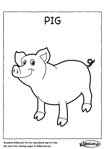 Download Free Pig Coloring Page and educational activity ...