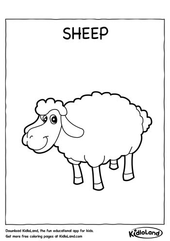 Cute Sheep Coloring Pages further 005 easter printables kid besides Pictures of Sheep Coloring Pages in addition  further  furthermore  in addition  additionally  besides  furthermore lamb colouring page 460 0 moreover . on free printable christmas coloring pages of sheep